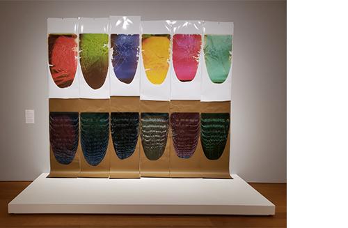 Norton+Museum+of+Art+Ellen+Carey+Camera-less+Photography+1.jpg