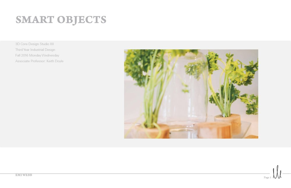 Emi_Webb_Process_Smart_Objects_Page_01.jpg