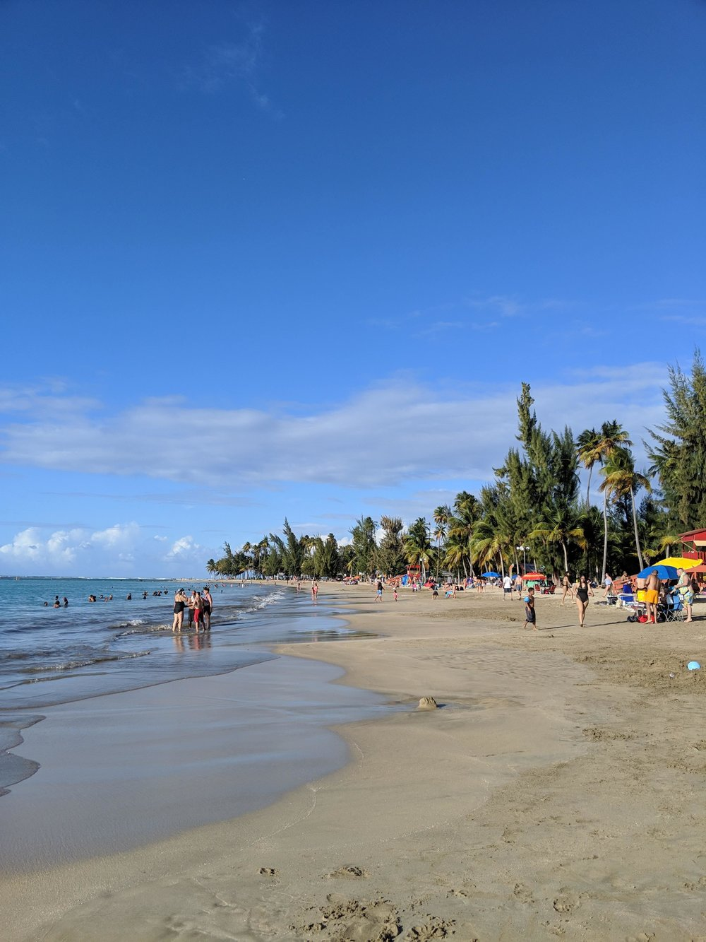 A wide view of the beach that we explored