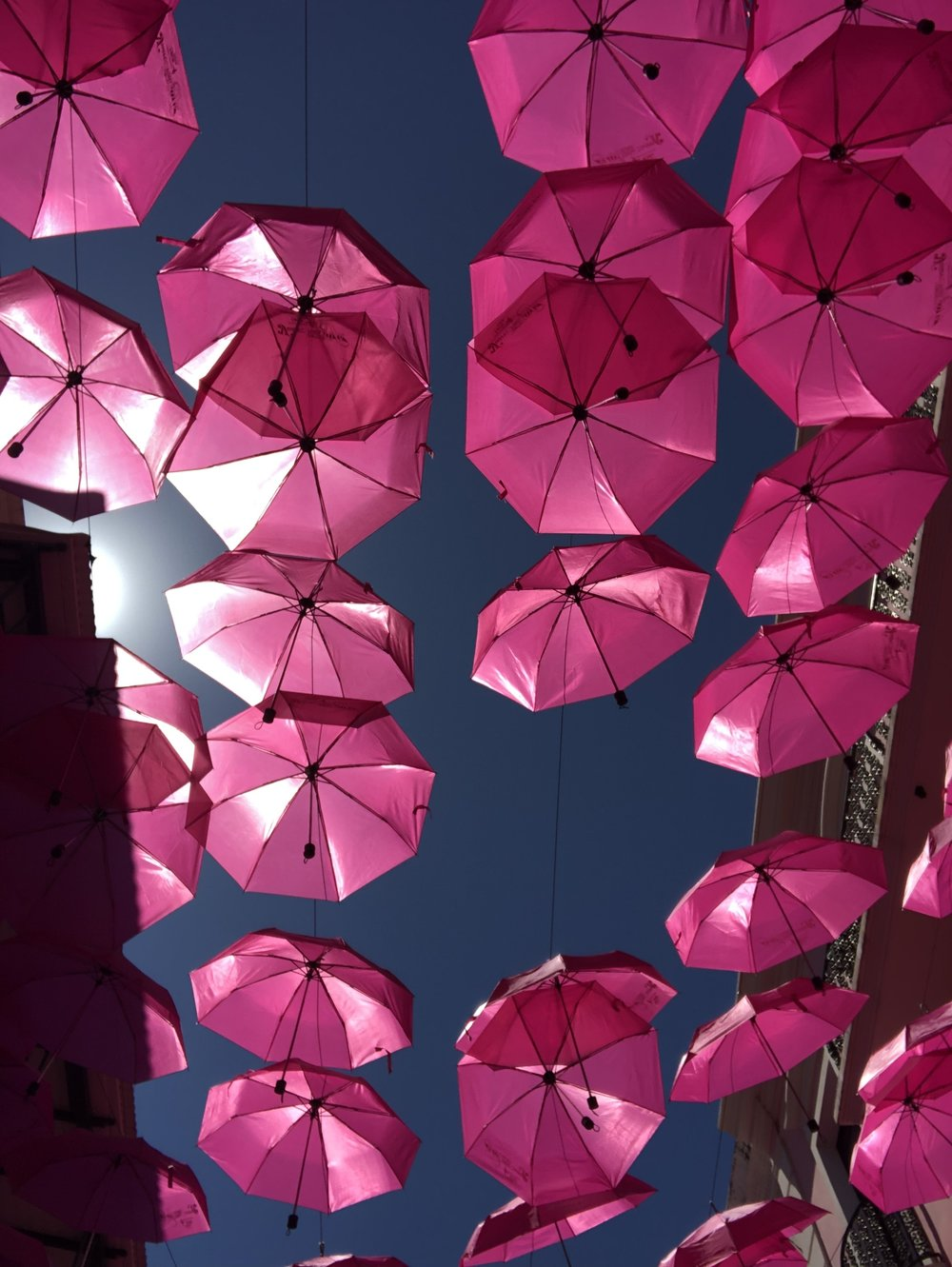 This is the beautiful artwork that can be seen from the ground in umbrella street!!