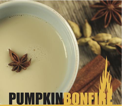 Pumpkin Bonfire Konenkii