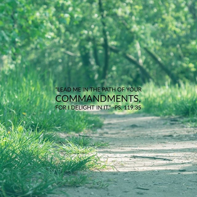 Young Adult LifeGroup continues our study of Psalm 119 at 7pm. DM for details. #WeAreTrinity #TYA