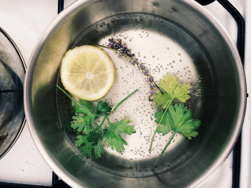 A morning ritual: warm lemon water. Sometimes I flavor with whatever other herbs I happened to have in the kitchen.
