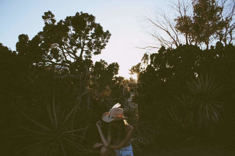 Joshua Tree at Sunset Oui We Girl
