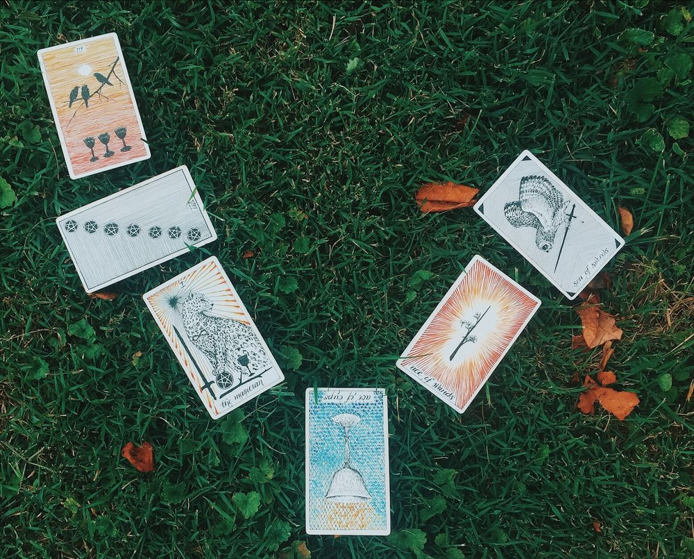 Oui We Tarot Reading August