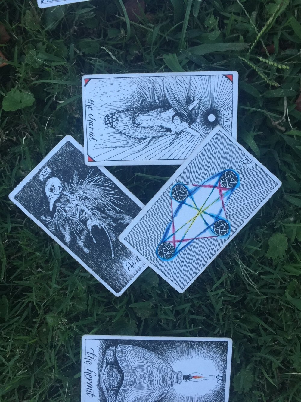 Oui We / Tarotscopes