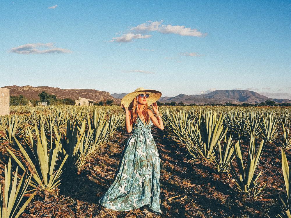 Oaxaca, Agave Field, Boho Traveler, Bohemian Style