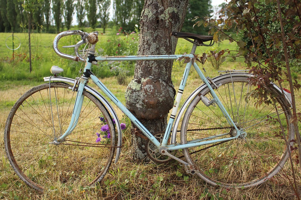Ahuntsic et Laval-des-Rapides,deux quartiers de mon enfance oùj'aimais partir àvélo pour longer la rivière, croiser des fermes, voir de magnifiques arbres et me sentir en paix!