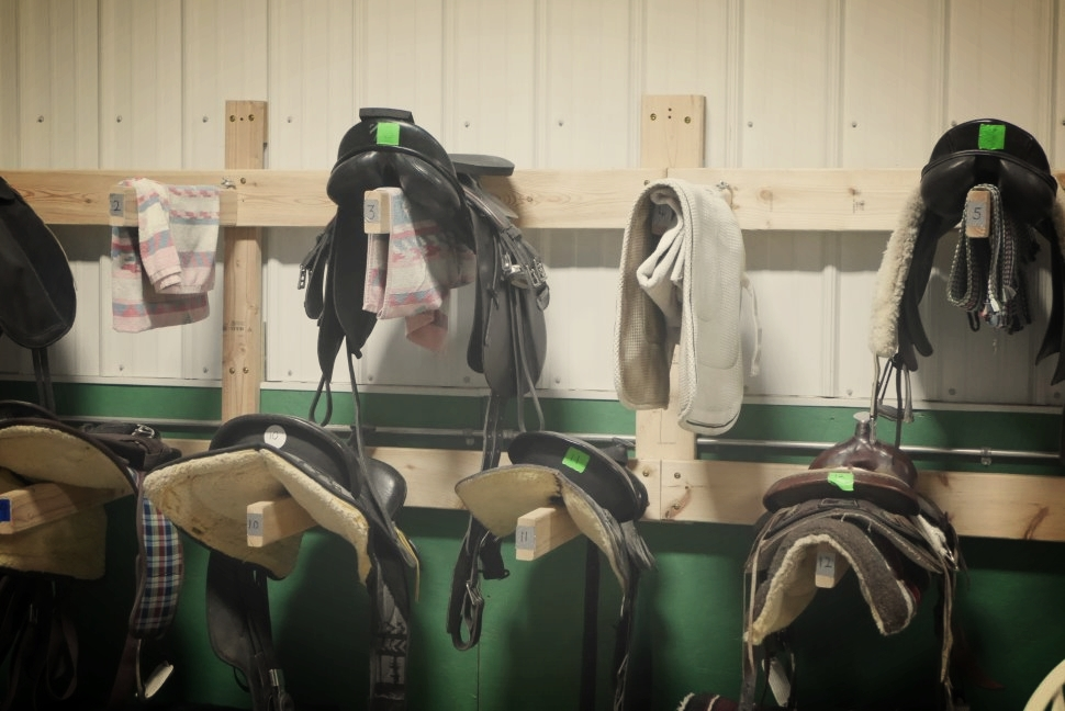 Saddles are organized on wall