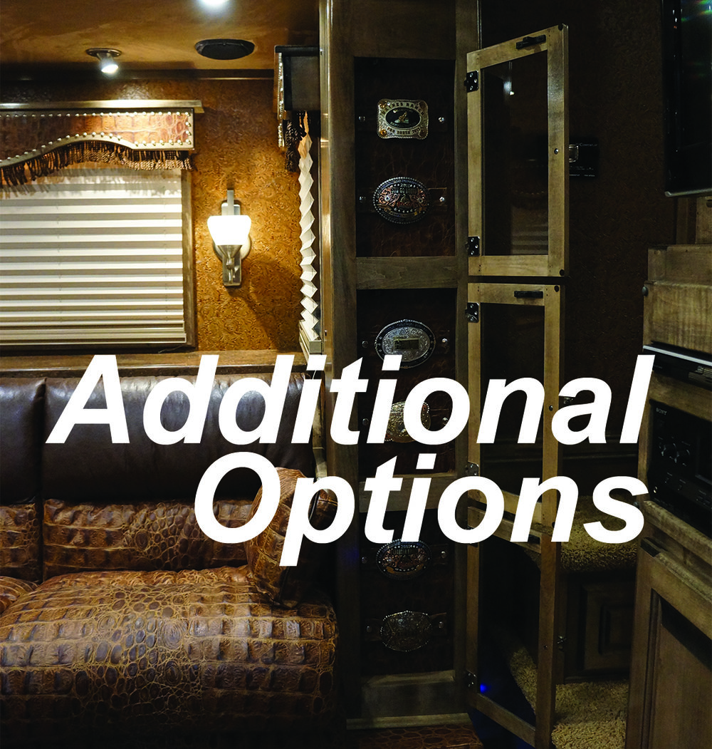 Additional Options.jpg