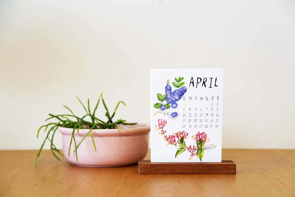 plants-calendar-3.jpg