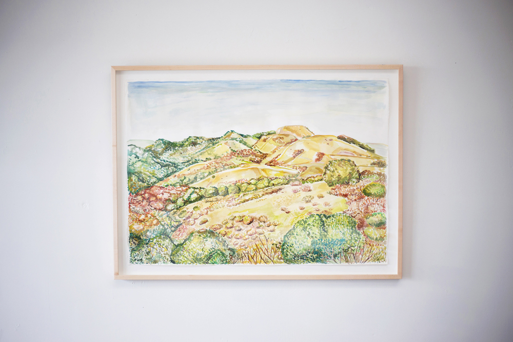 landscape-goldenhills.jpg