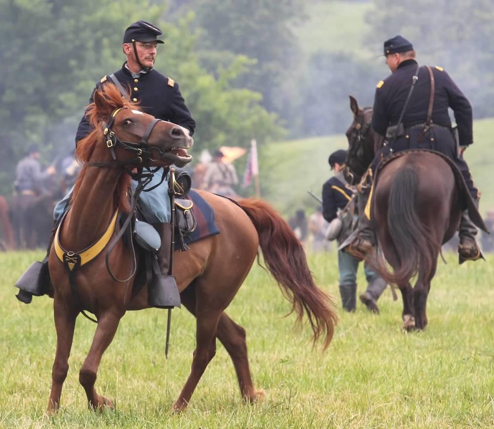 Cavalry 35