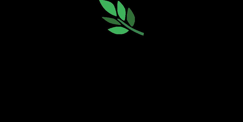 logo_pysrc_180415.png