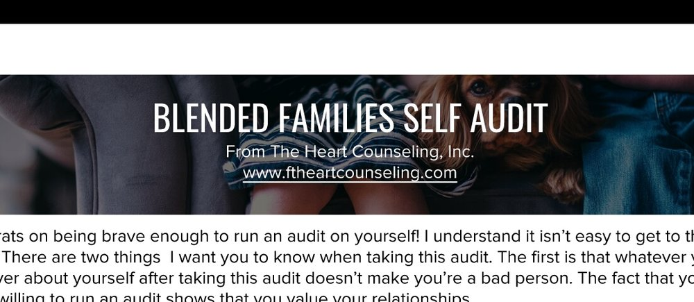 Blended Families can be challenging! Click the image above to take the audit + see where you stand. Or read the blog post on Blended Families for some tips, then take the audit!