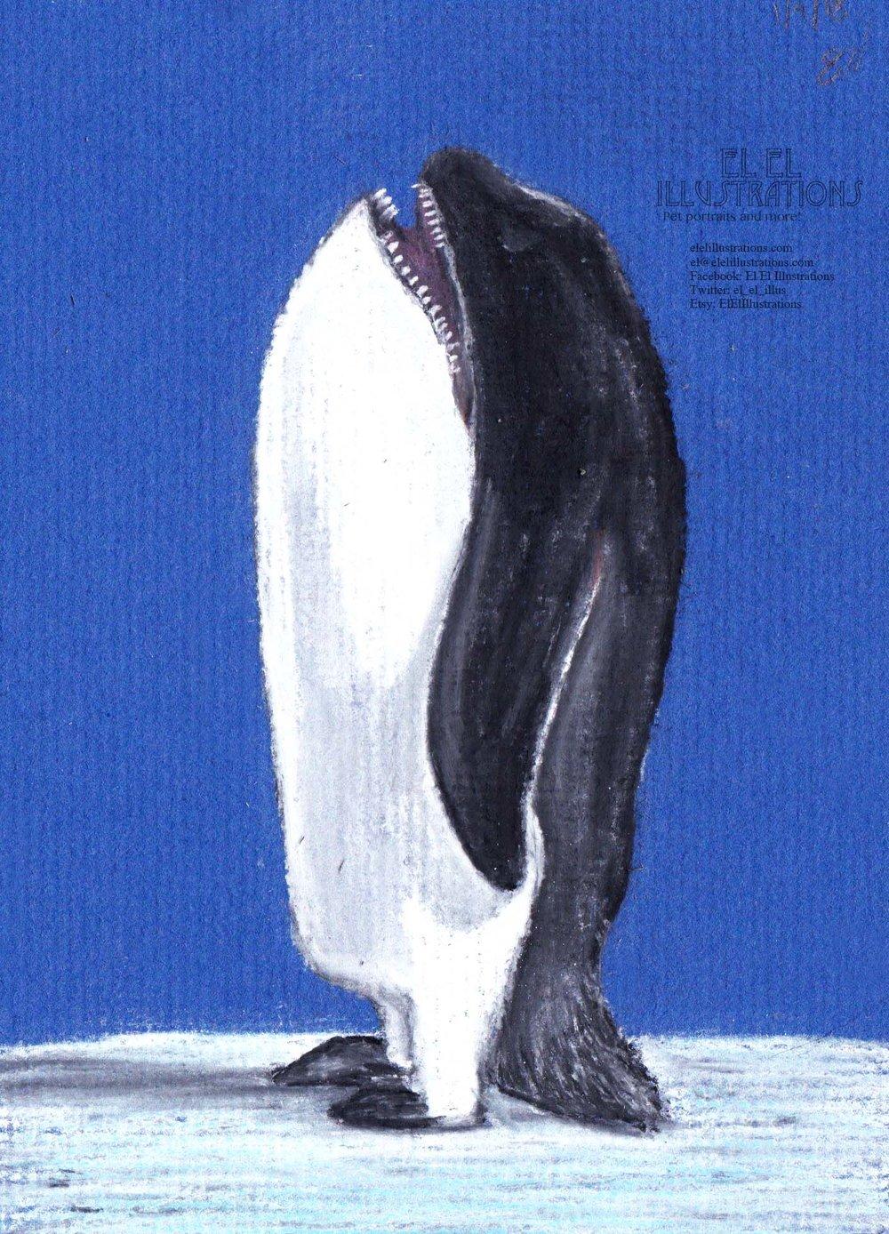 whaleguin_wm.jpg