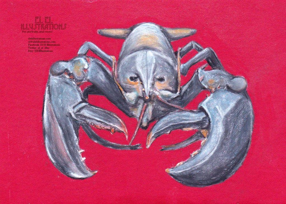 lobster_wm.jpg