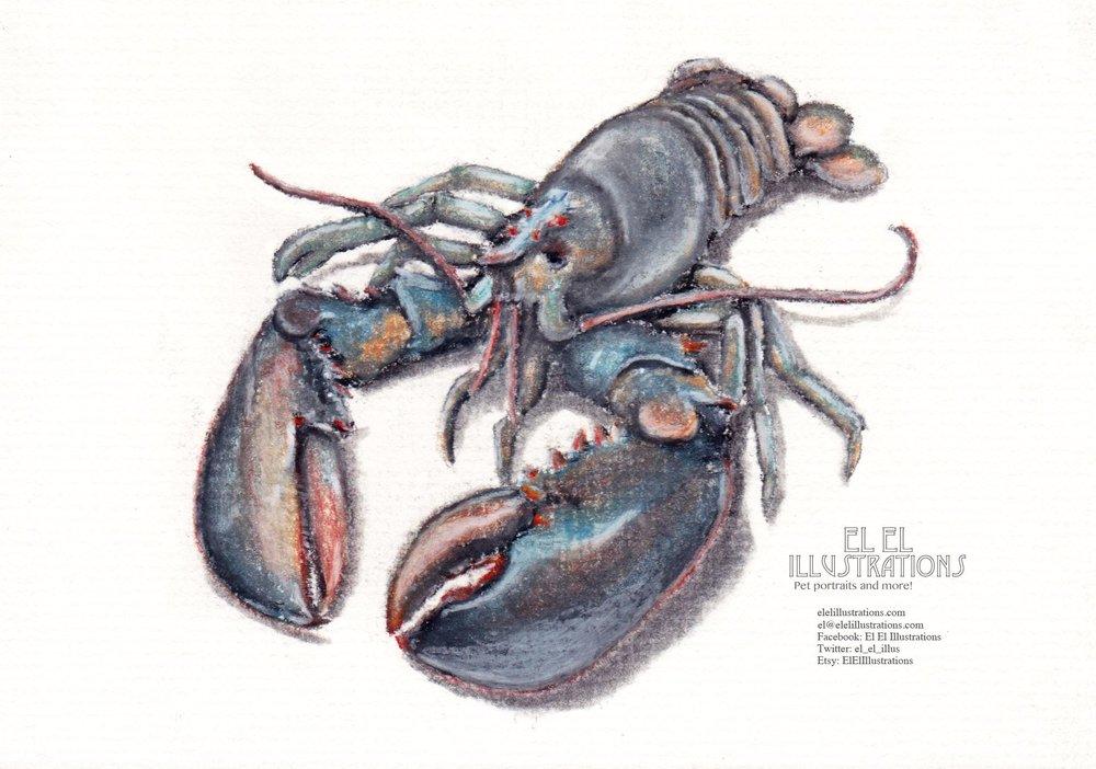 lobster2_wm.jpg