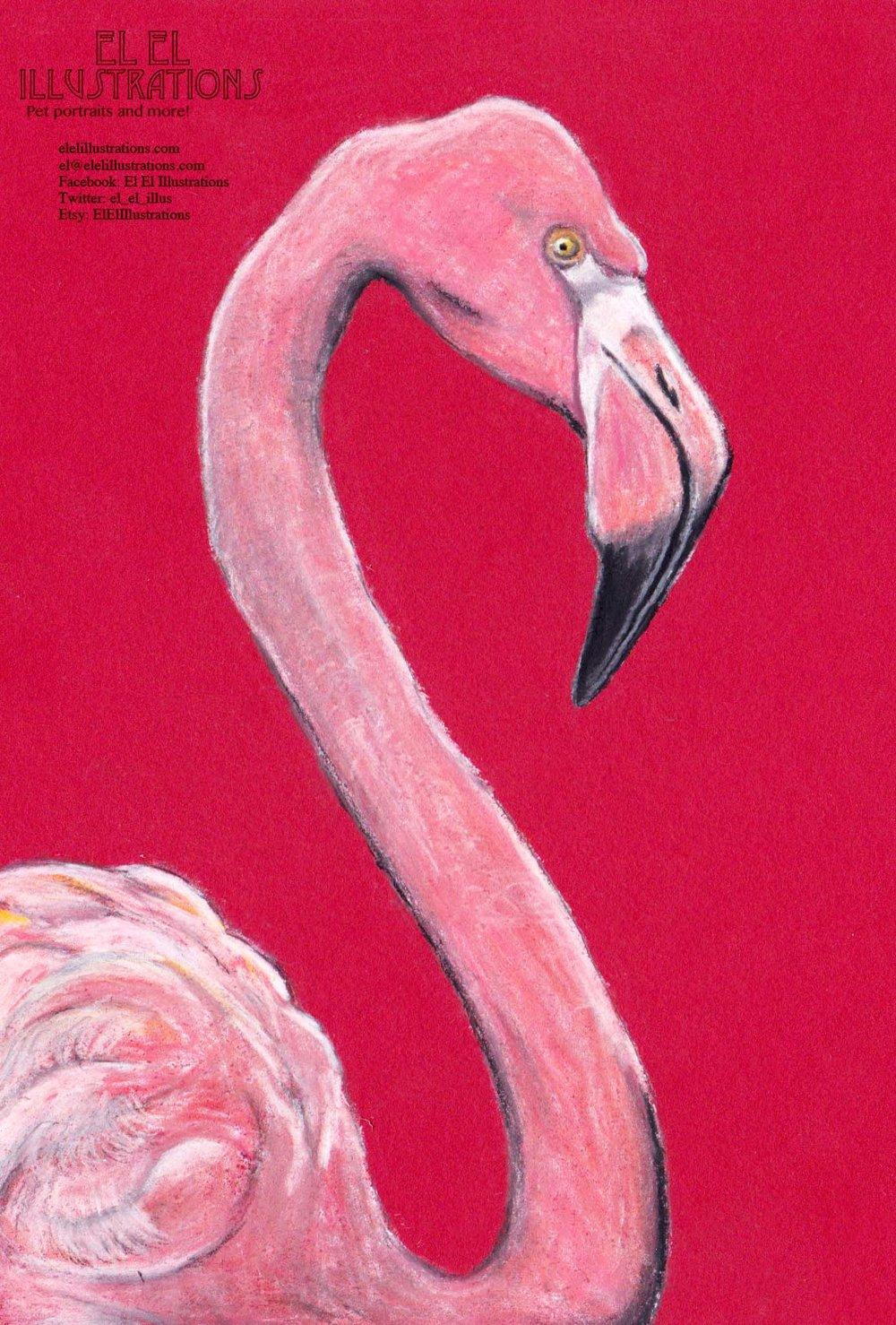 flamingo3_wm.jpg