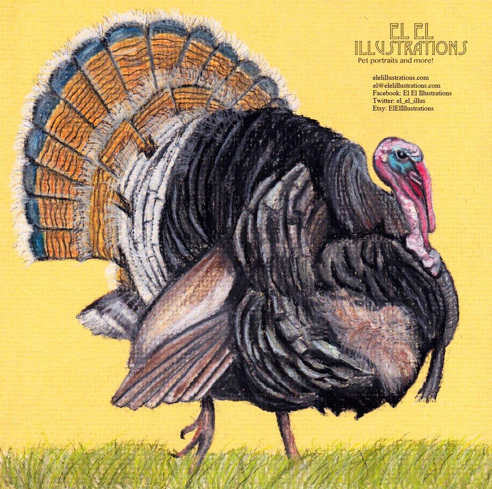 turkey_wm.jpg