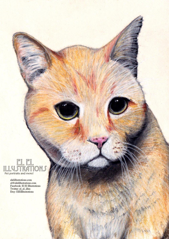 mac_cat_wm.jpg