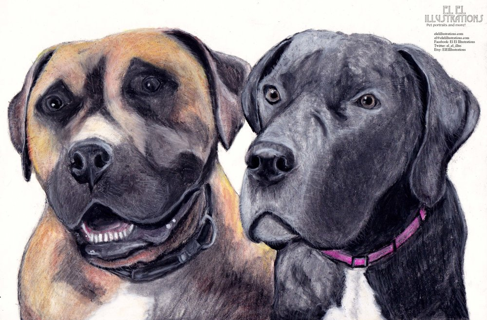 brownandblackdogs_wm.jpg