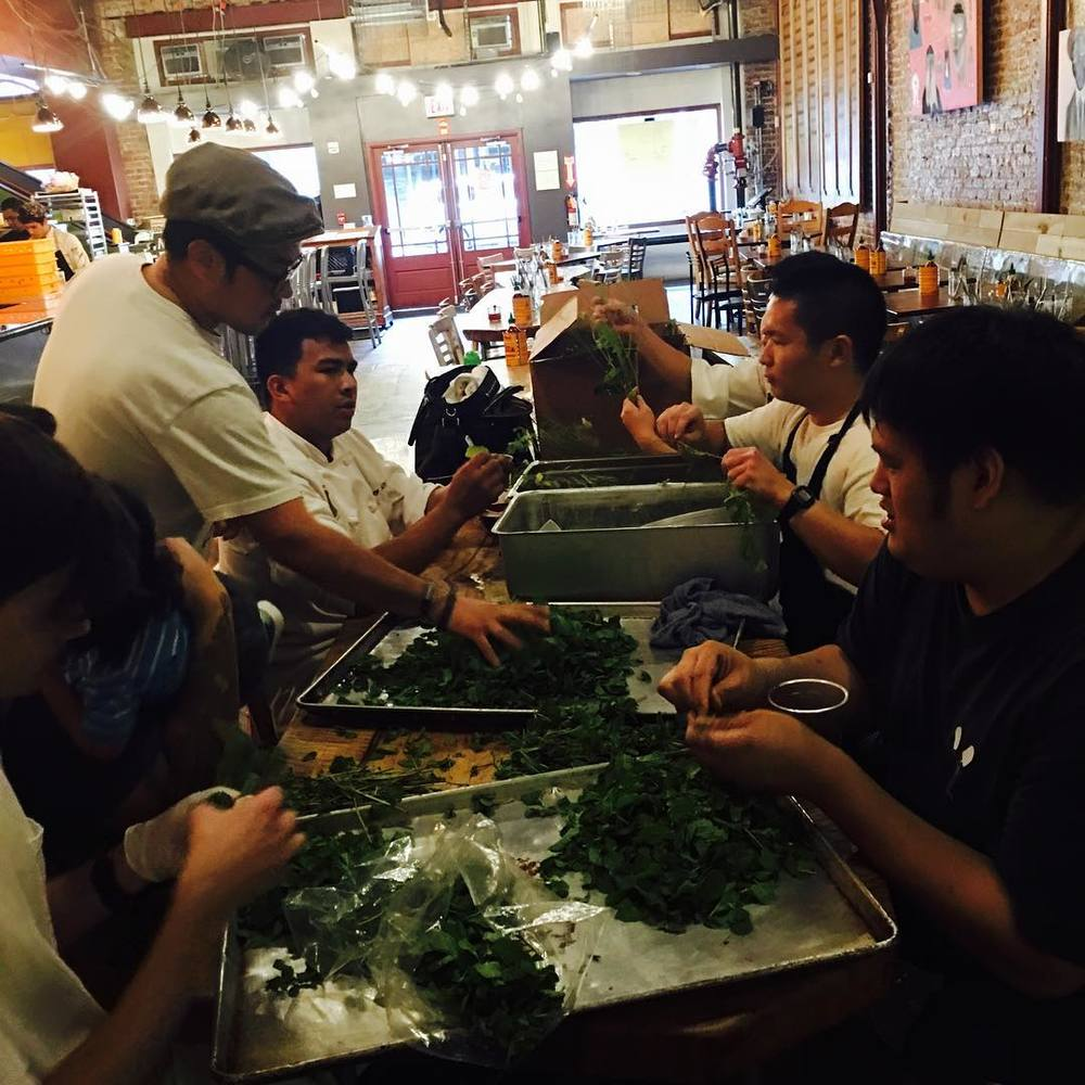 Part of our 28 menu options for the @nordstromhawaii grand opening is lots of Vietnamese herbs; 30 pounds of Mint and Thai Basil is alone! We are committed to make 21,000 plates for the event so this prep is 2 weeks in the making!