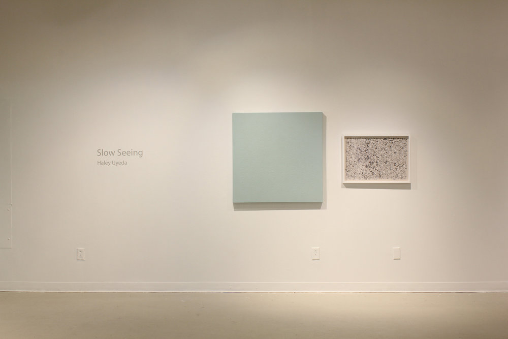Slow Seeing  MFA Thesis Exhibition 2016