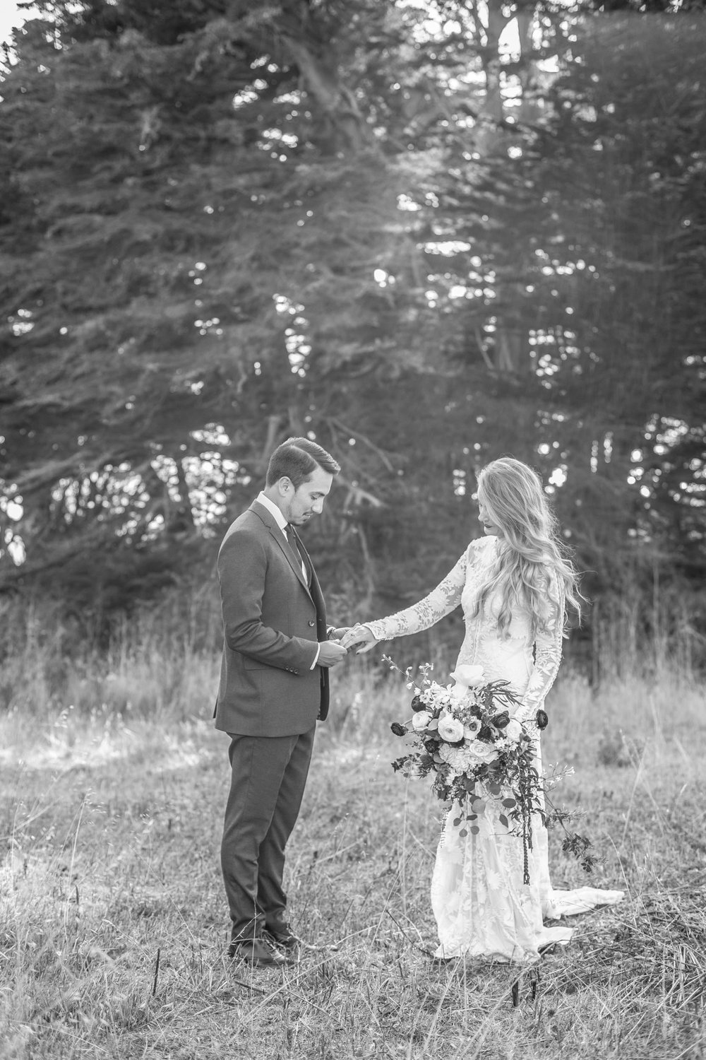 Freda Banks201609 WeddingCuffeys Cove Laura and Ryan41.jpg