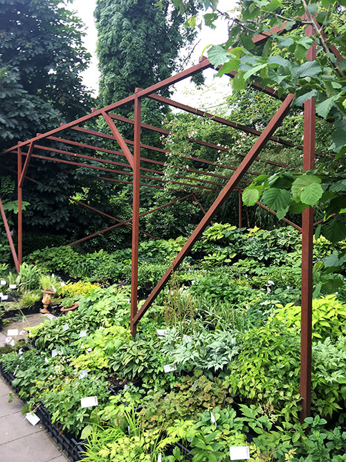 Seen here is a steel arbor from Richard's visit to  Peter Janke's Hortvs Garden  in Germany.