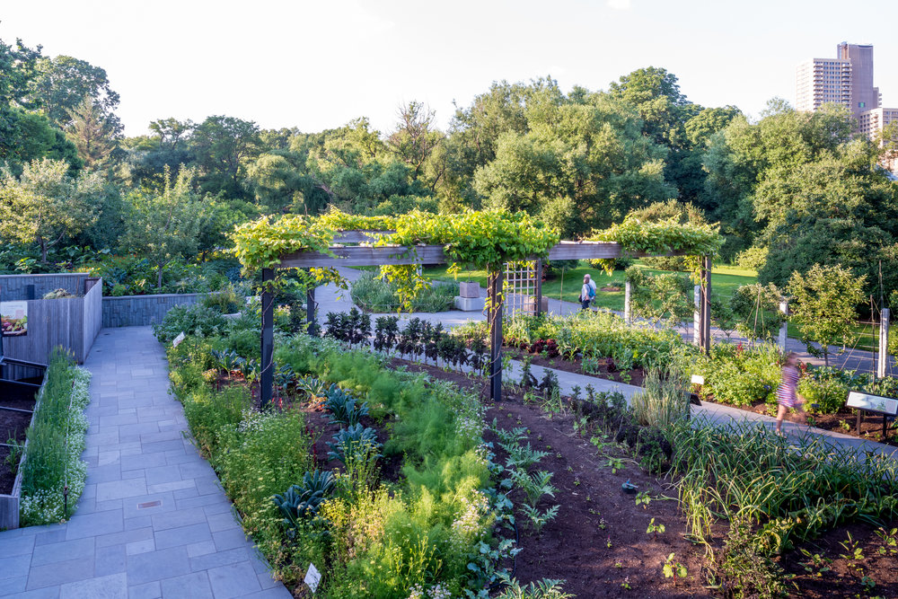 Brooklyn botanical herb garden