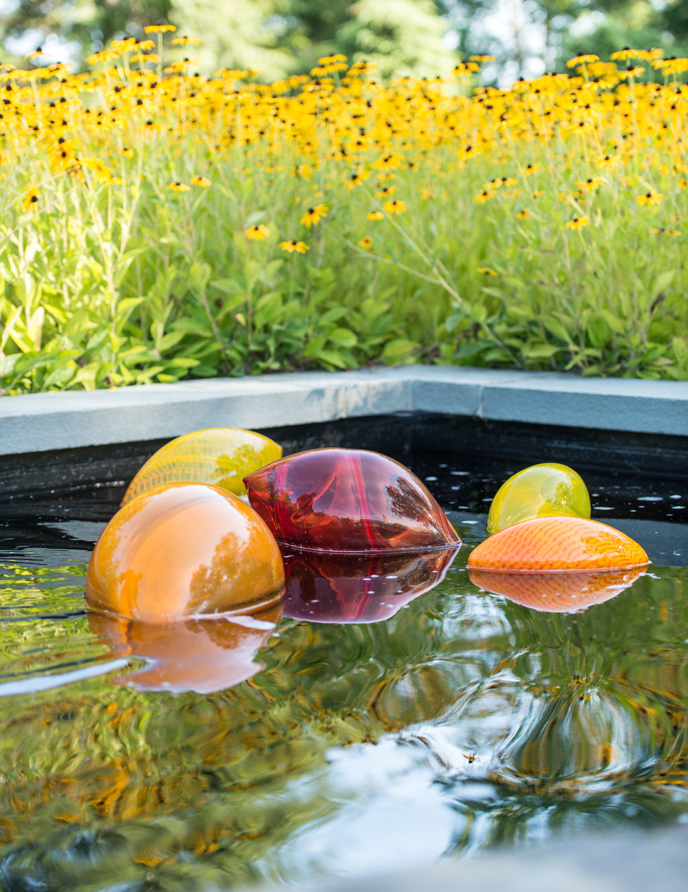 Koi glass floats arranged in the reflective pool