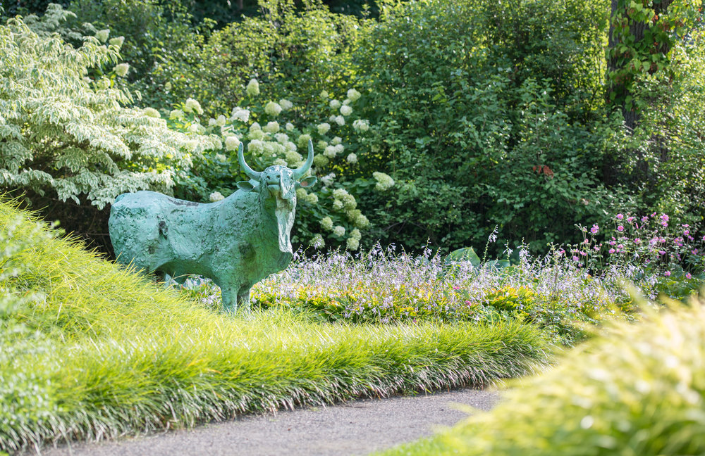 Bull statue standing in a massplanting of carex