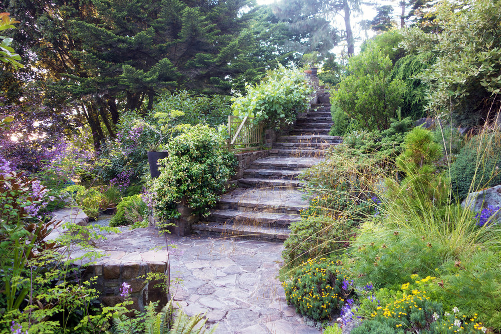FLAGSTONE SET STAIRWAY AND PATIO WITH PLANT MATERIAL