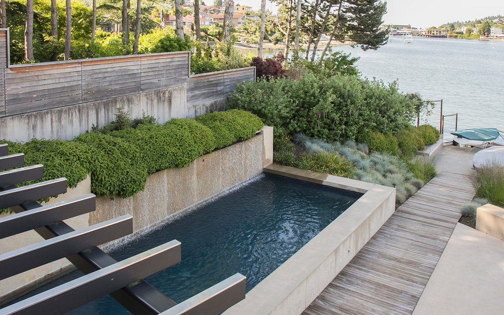 Contemporary lakeside garden