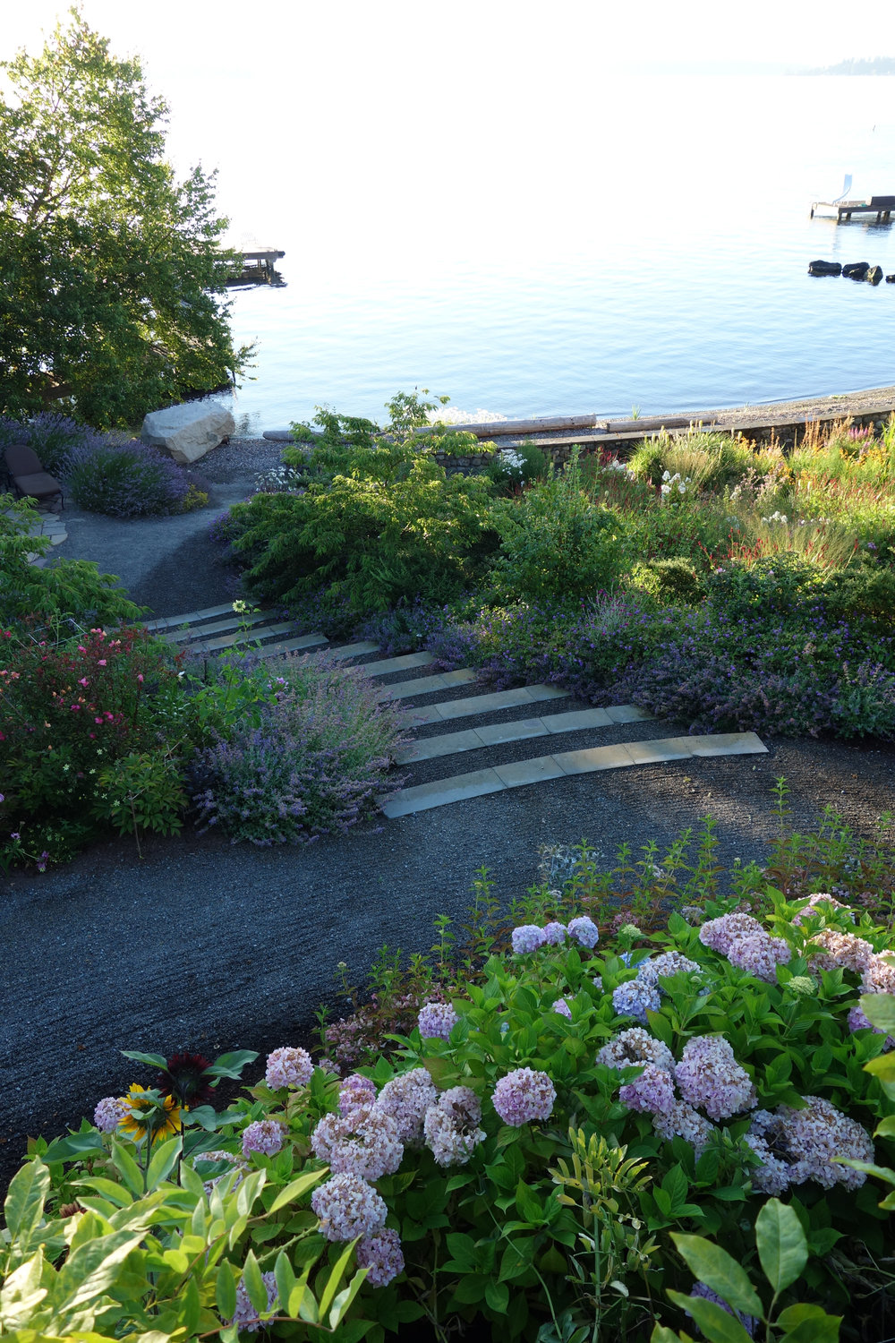 Informal steps toward beach amongst meadow planting