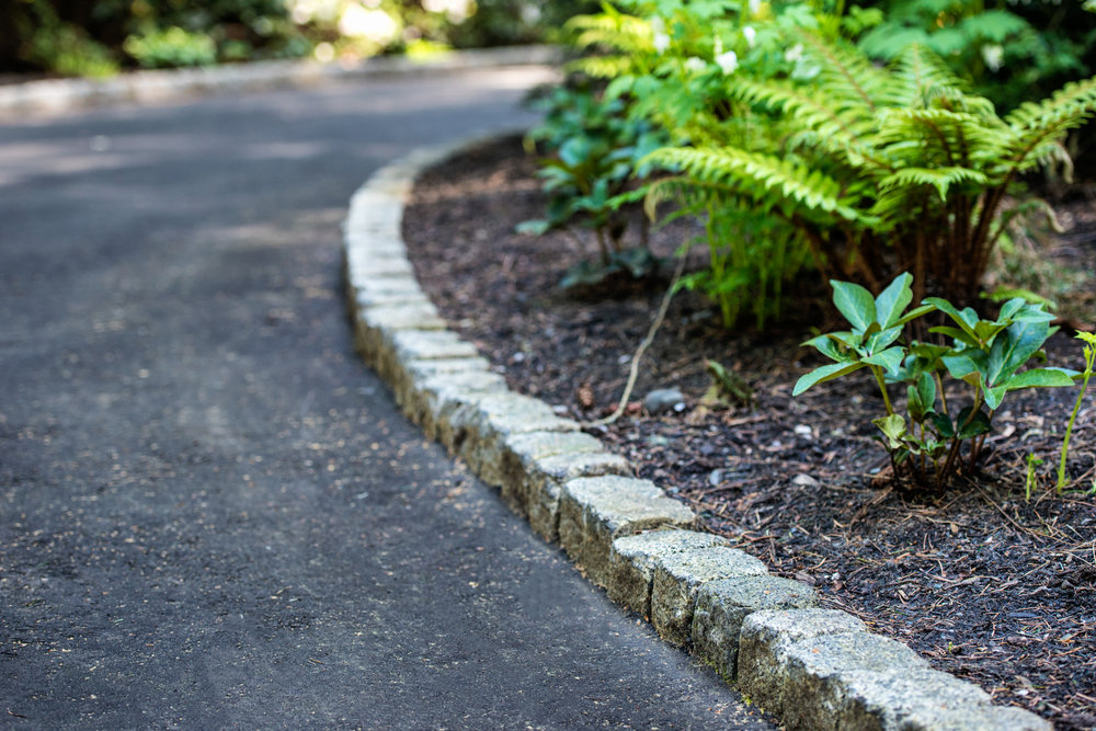 edging and plantings