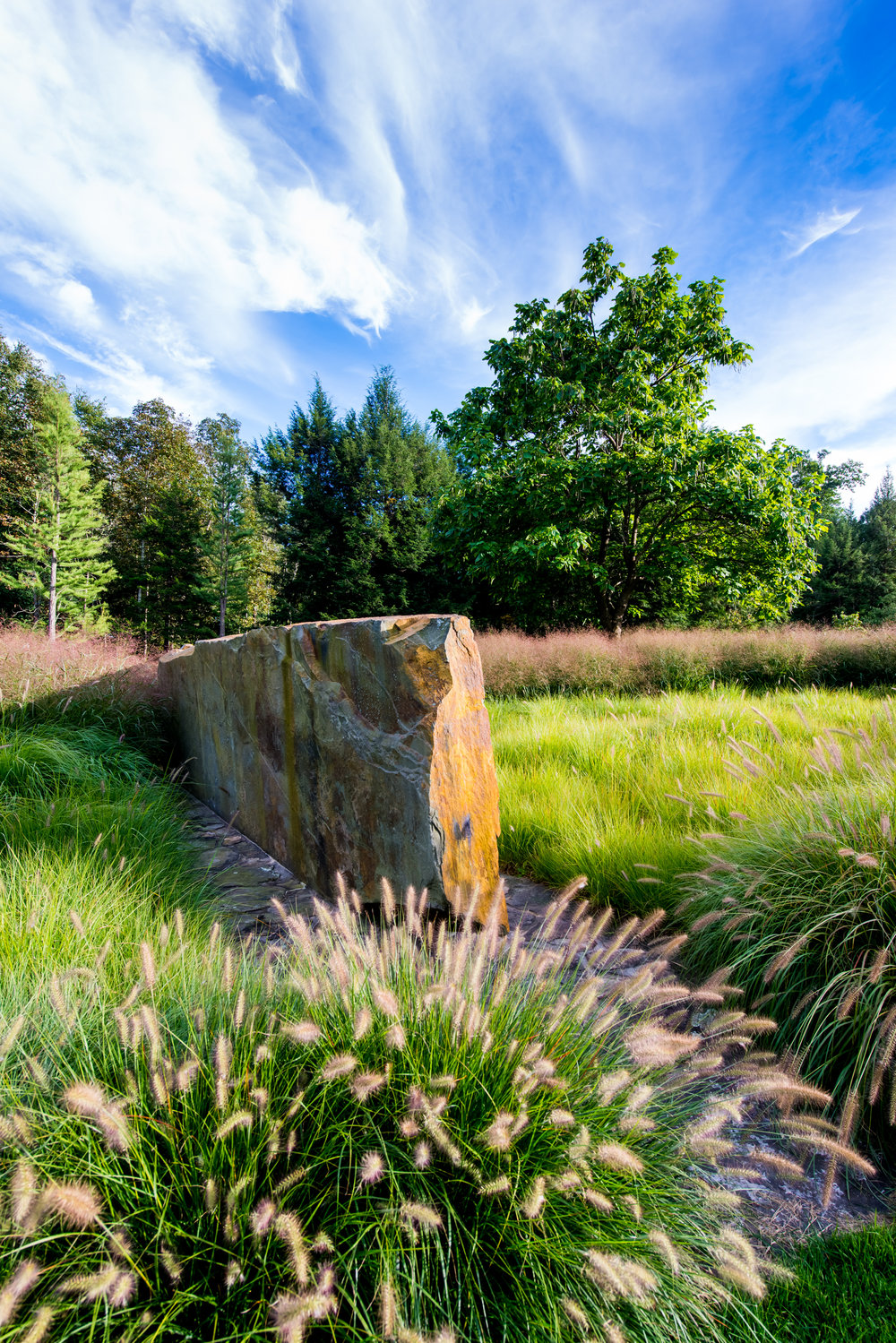 Stone amongst Cassian fountain grass