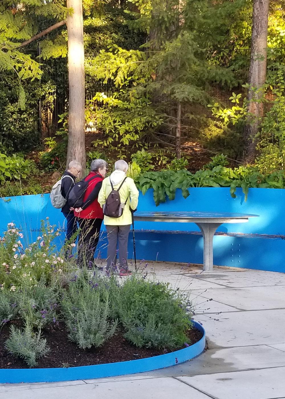 Land Morphology Woodland Park Sensory Garden 17.jpg