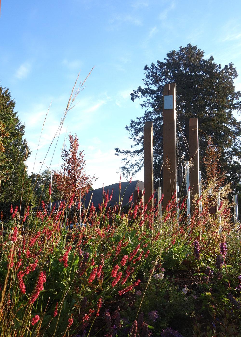 Woodland Park Sensory Garden_Land Morphology 10.jpg