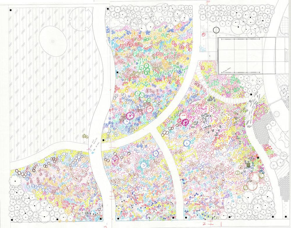 Leach Botanical Garden Pollinator Meadow