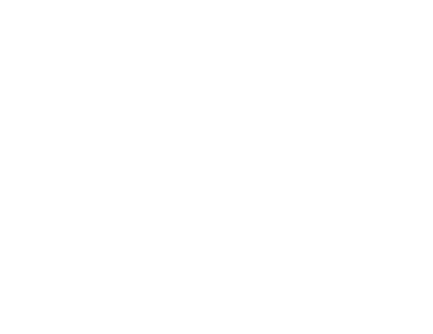 birdbrand - photography