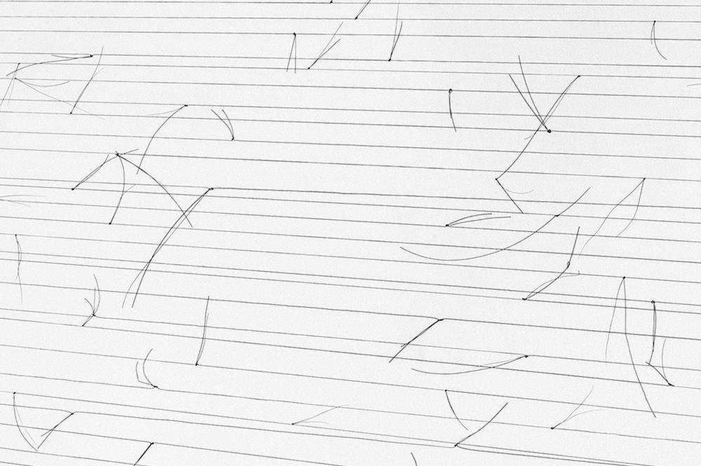 Detail  Portrait of Memories #2, Knotted Horse hair, wood, ash, steel, detail.jpg