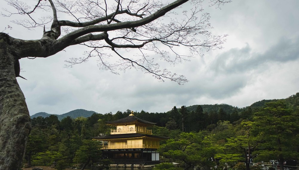 JAPAN_SMLIMG_5913.JPG