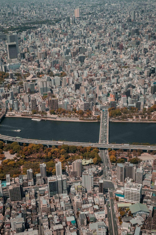 JAPAN_SMLIMG_6666.JPG