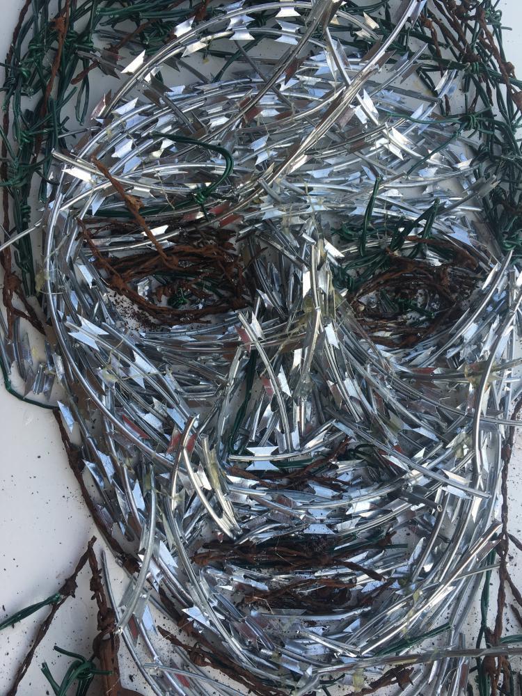 OP Freuler's portrait with razorblades