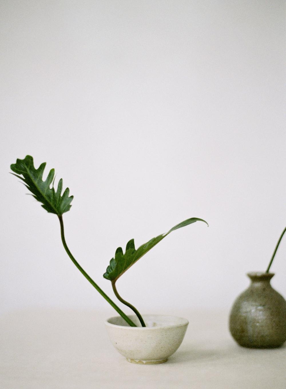 218Singapore Tropical Ikebana Editorial Photography.jpg
