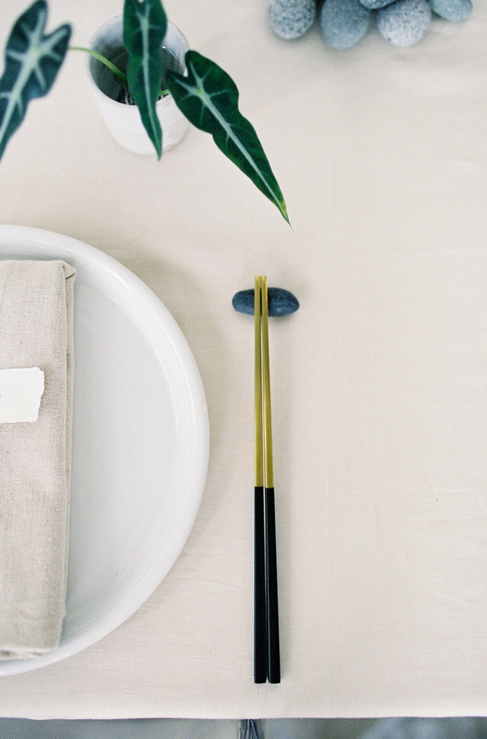 224Singapore Tropical Ikebana Editorial Photography.jpg