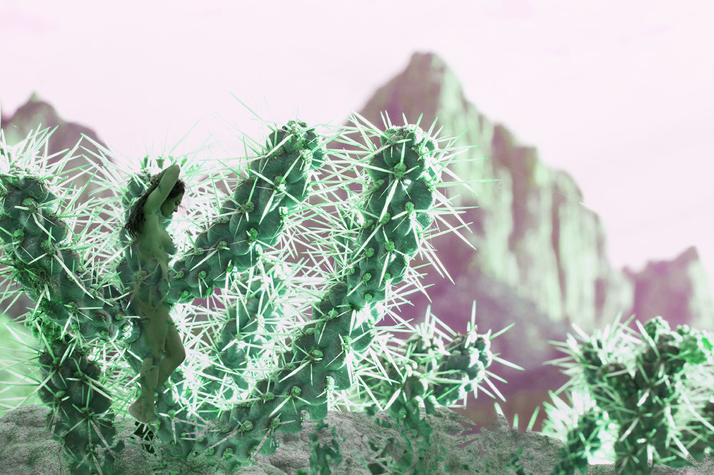18_03_13 final earth 002 cactus___18_04_04 paint mines final 013 overlay darken hue a sm.jpg