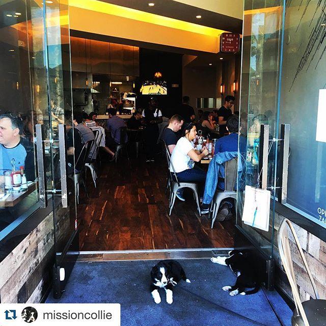 @missioncollie with @repostapp. ・・・ Working the door at @grub_sf